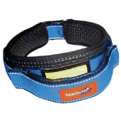 Patento Pet Collar, Leash, Harness